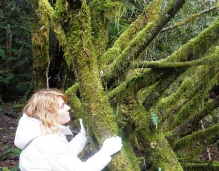 Jillian feeling energy with a tree near Shannon Falls, BC