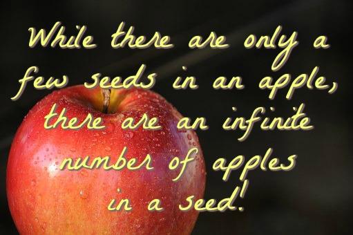 apple-871316__340