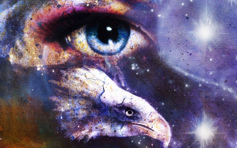 painting eagle with woman eye on abstract background and Yin Yang Symbol in space with stars. Wings to fly.