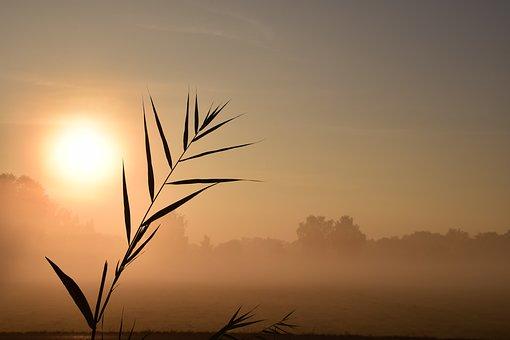 sunrise-1688100__340
