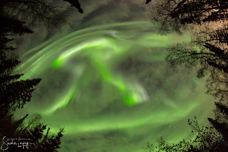 Energy Update: High SOULar Winds Offer Year EndDetox