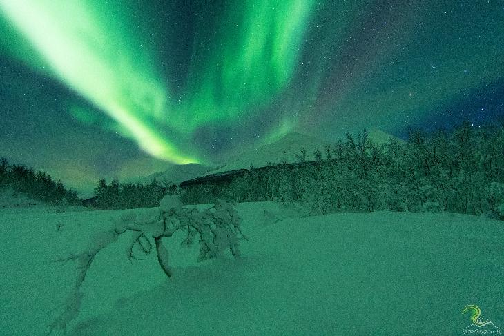 Energy Update: High SOULar Winds, Matching Magnetics, InnerPolarities