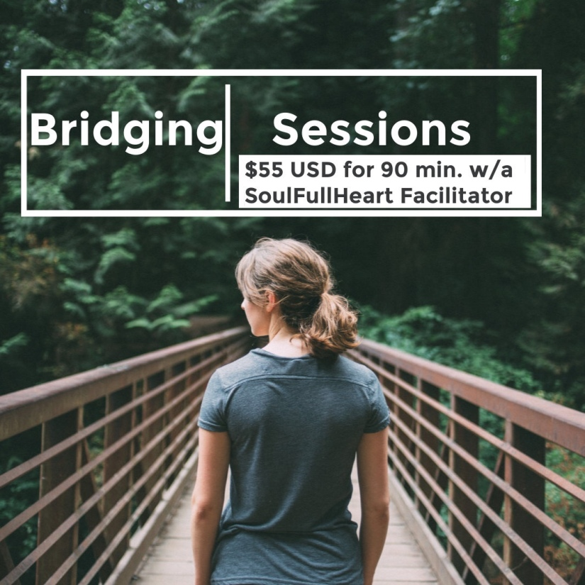 Support To Be Your Own Healer – SoulFullHeart Bridging Sessions: SoulFullHeart Weekly Museletter (Feb 4,2019)