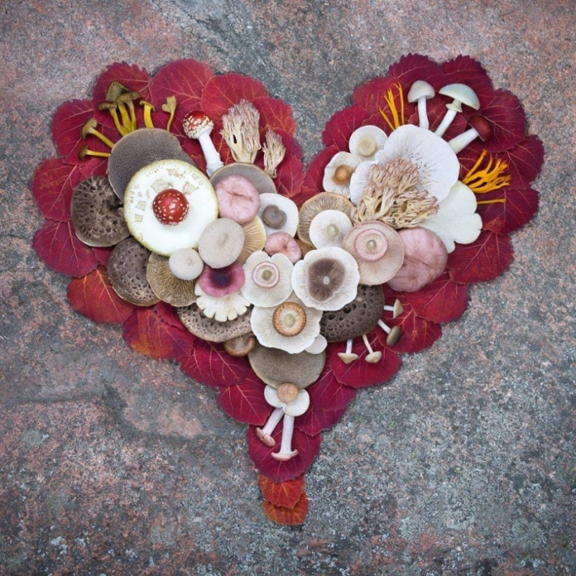 Love Within To Love With Other: SoulFullHeart Weekly Museletter (Feb 11,2019)
