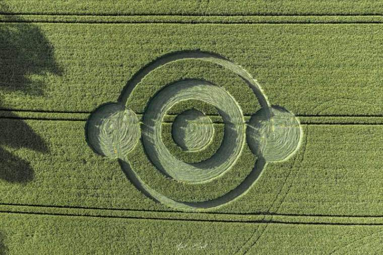 Crop Circles 2019 ~ Norridge Wood, Nr Warminster, Wiltshire Dji0317