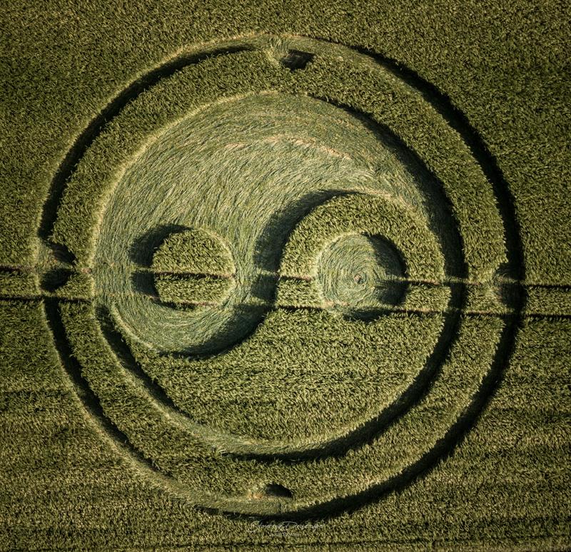 Símbolo Yin-Yang oferece a unificação da ativação da polaridade - 30 de maio de 2020 - SoulFullHeart Experience 8