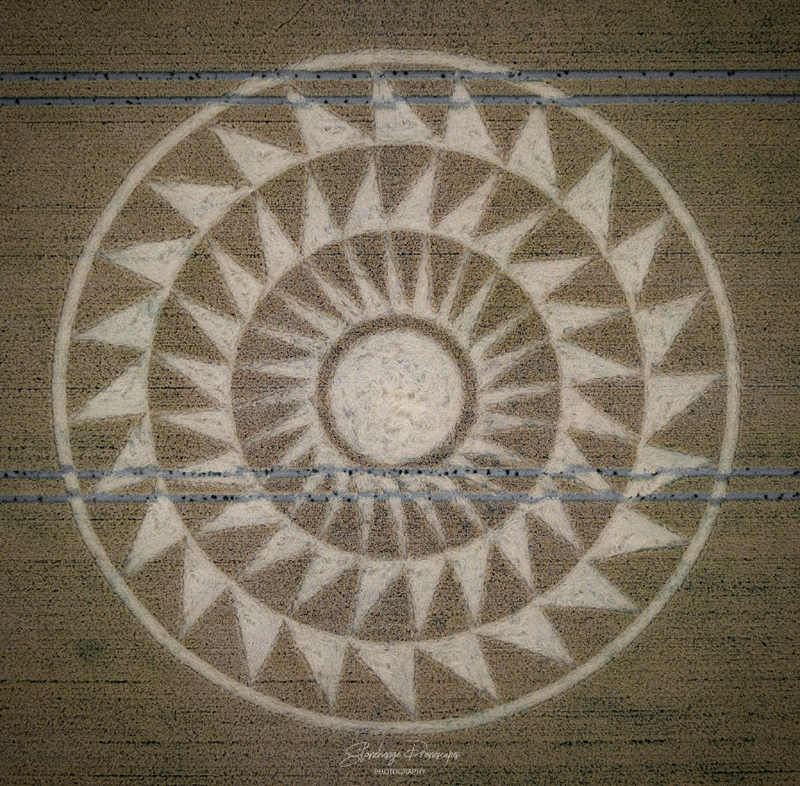 Crop Circles 2020 -  Woolstone Wells, Nr Uffington Castle, Oxfordshire Reported 9th August. Dji_0492
