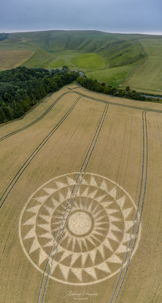 Crop Circles 2020 -  Woolstone Wells, Nr Uffington Castle, Oxfordshire Reported 9th August. Dji_0509-pano