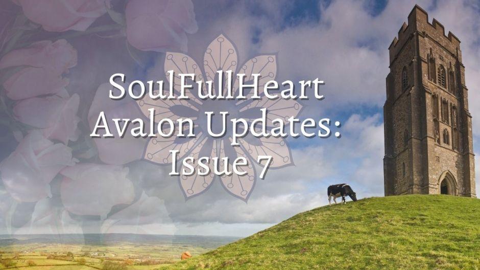 Edição 7 - Experiência SoulFullHeart 4